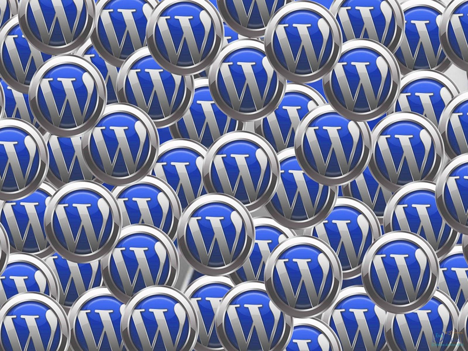 Site vitrine ou Blog WordPress
